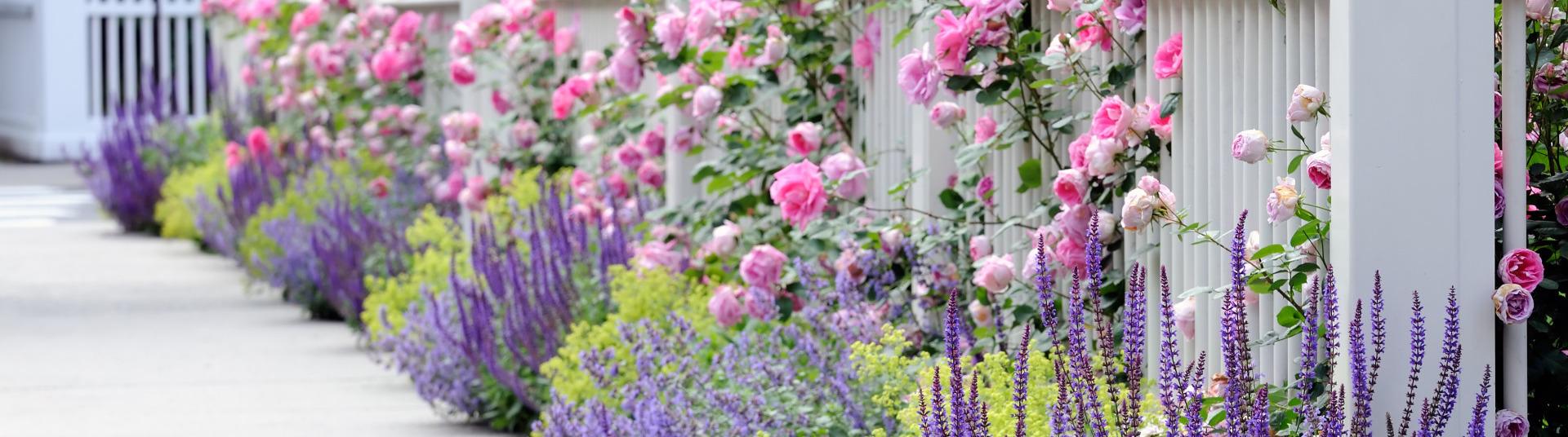 blikmakers voor in de tuin