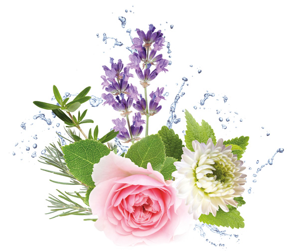 hydrolaten bloemenwaters